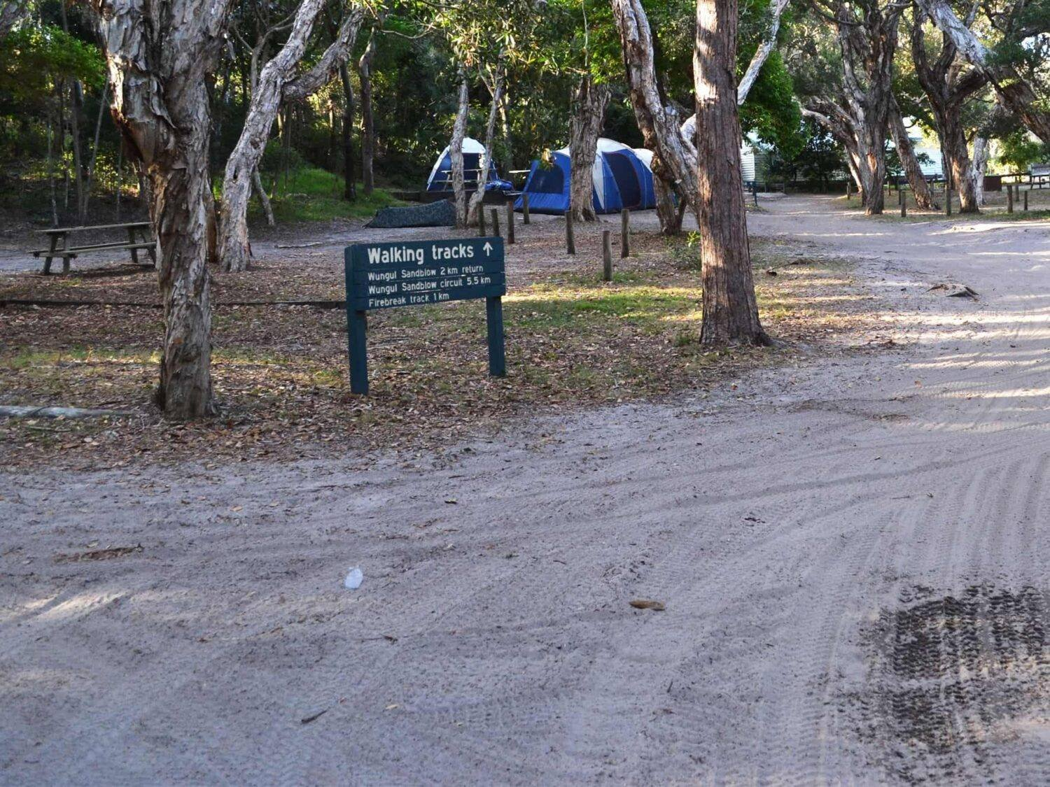 Cool off at your shady camp site. Photo credit: Rob Cameron/Queensland Government